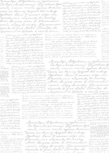 Folienkarton A 4 WEISS mit silberner Schrift 652004/0144