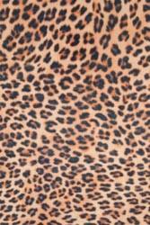 Modelierfilz Gepardenmuster / Cheetah 30,5 x 45,7 cm 421062