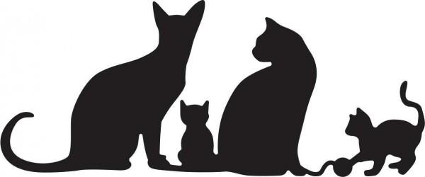 Cheery Lynn Stanzform Katzen / Kitty Kitty Meow Meow B417