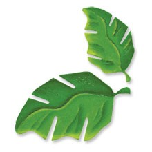 Sizzix Stanzform Originals LARGE Blätter / leaves tropical 655169