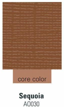 Cardstock sequoia 30,5 cm X 30,5 cm 270 -AO030