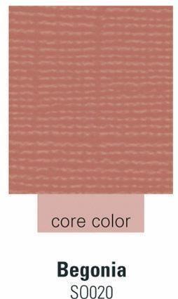 Cardstock begonia 30,5 cm X 30,5 cm 180 -SO020