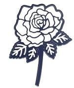 Aurelie Stanzform Rose / Rose AUCD1002