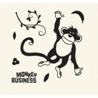 Basic Grey Clear Stamps Monkey Business 2088-10