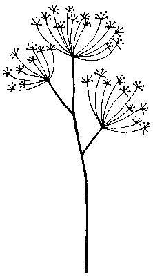 Artemio Stempel Pusteblumen ARTHF245