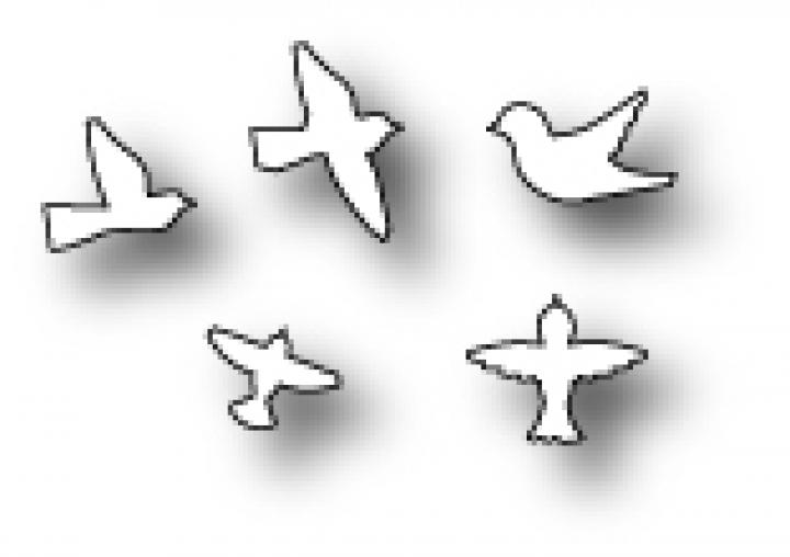 memory box stanzform fliegende v gel flying birds 98655. Black Bedroom Furniture Sets. Home Design Ideas