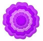 Blossom Three S4-312