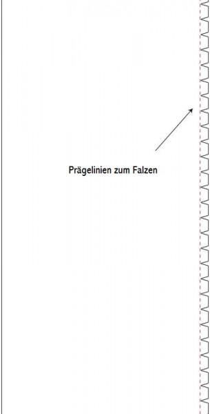 Eigendesign Universal-Box PMSF 038
