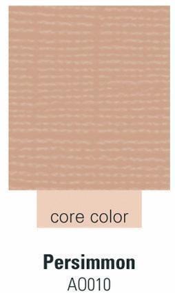 Cardstock persimmon 30,5 cm X 30,5 cm 250 -AO010
